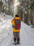 Montañés que fotografía en el camino forestal nevoso imagenes de archivo