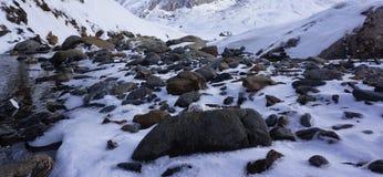 Montaña Artouste 04 foto de archivo