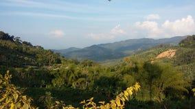 Montaña asoleada Foto de archivo