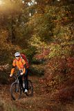 Montaña biking abajo del rastro Turista con viaje de la mochila en la bici Fotos de archivo libres de regalías
