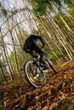 Montaña Biking en otoño fotografía de archivo