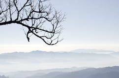 Montaña brumosa Imagen de archivo libre de regalías