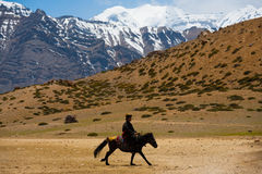 Montaña budista del caballo de montar a caballo del hombre del peregrino Imagenes de archivo