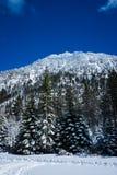 Montaña cerca del lago Tahoe imagenes de archivo