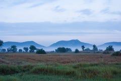 Montaña, cielo y niebla con el campo de arroz Imagen de archivo