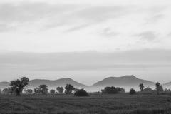 Montaña, cielo y niebla con el campo de arroz por mañana Fotos de archivo libres de regalías
