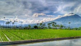 Montaña Cikuray Indonesia Imagen de archivo
