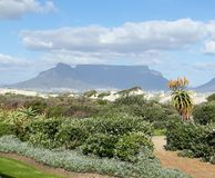 Montaña Ciudad del Cabo de la tabla imagenes de archivo