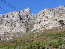 Montaña Ciudad del Cabo del vector imagen de archivo libre de regalías
