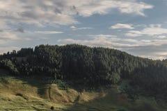 Montaña con el cielo nublado de los abetos en el fondo fotografía de archivo