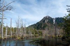 Montaña con el cielo y el lago claros Foto de archivo