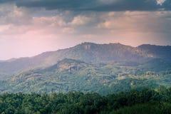 Montaña con los árboles de coco en ella Fotografía de archivo libre de regalías