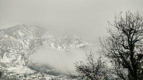 Montaña coronada de nieve con la vegetación alpina/la vegetación, la nube y las montañas coronadas de nieve blancas Fotografía de archivo