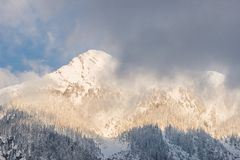 Montaña cubierta por la nieve bajo luz de la salida del sol Imagen de archivo