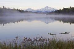 Montaña de Alaska Denali fotos de archivo libres de regalías
