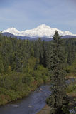 Montaña de Alaska Denali fotografía de archivo libre de regalías