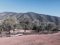 Montaña de Amzaham Imagen de archivo libre de regalías