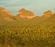 Montaña de Arizona en la puesta del sol Fotos de archivo libres de regalías