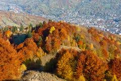 Montaña de Autumn Carpathian, Rakhiv, Ucrania Imágenes de archivo libres de regalías