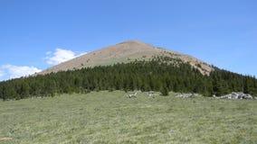 Montaña de Baldy Imagen de archivo libre de regalías