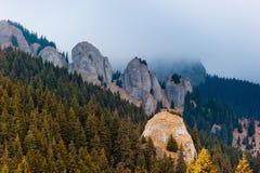 Montaña de Ciucas Fotos de archivo