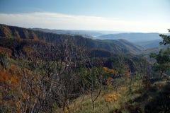 Montaña de Cozia y valle de Olt Imagen de archivo