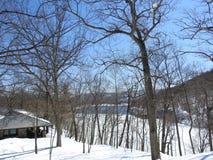 Montaña de desatención Nueva York del oso del lago hessian de la cabina de la escena del invierno Imagenes de archivo