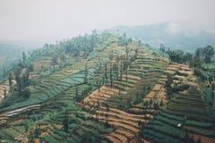 Montaña de Dieng imagen de archivo libre de regalías
