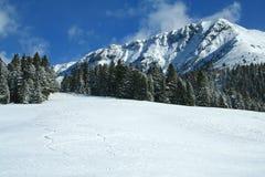Montaña de Dolomiti, trentino, Italia Imagenes de archivo