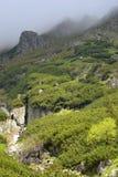 Montaña de Fagaras Fotos de archivo libres de regalías