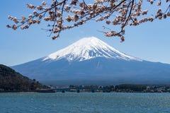 Montaña de Fuji con la cubierta de nieve en el top con la flor de cerezo imagenes de archivo