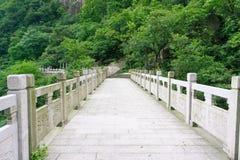 Montaña de Huangshan hermosa en China Fotos de archivo