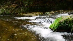 Montaña de Jizerske, República Checa almacen de video