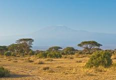 Montaña de Kilimanjaro en la salida del sol Foto de archivo libre de regalías