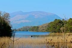 Montaña de Killarney Foto de archivo