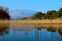 Montaña de Killarney Fotografía de archivo