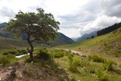 Montaña de Kirguistán Foto de archivo