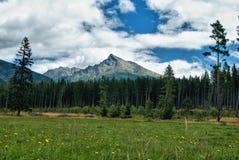 Montaña de Krivan, Vysoke Tatry alto Tatras Imagen de archivo