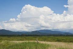 Montaña de la hierba y cielo azul de las nubes Fotografía de archivo libre de regalías