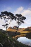 Montaña de la horquilla fotografía de archivo