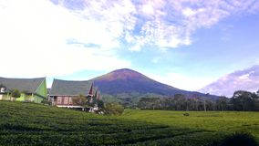 Montaña de la mañana Fotos de archivo