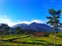 Montaña de la mañana Imagen de archivo
