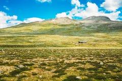 Montaña de la naturaleza de Noruega debajo de Sunny Blue Sky Imagen de archivo libre de regalías