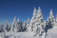 Montaña de la nieve Fotos de archivo libres de regalías