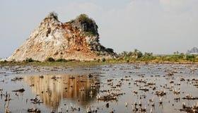 Montaña de la piedra caliza con el lago en Dong Nai, Vietnam Foto de archivo libre de regalías