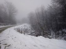 Montaña de los árboles del camino del hielo de la nieve Fotos de archivo libres de regalías