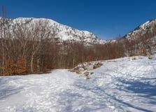Montaña de Orjen. Montenegro Imágenes de archivo libres de regalías