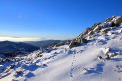 Montaña de Osogovo, Bulgaria, Europa Imagen de archivo