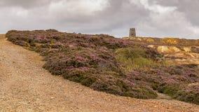 Montaña de Parys, País de Gales, Reino Unido Fotografía de archivo