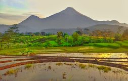 Montaña de Penanggungan Fotos de archivo libres de regalías